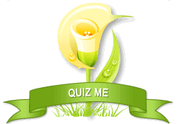 Quiz Me achievement earned on 7/23/2012 6:09:57 PM.