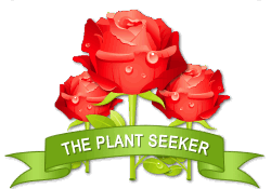 The Plant Seeker achievement earned on 5/19/2012 2:46:55 PM.