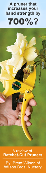 Review Of The Florian Ratchet Pruners