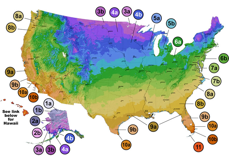 Marvelous Hardiness Zones